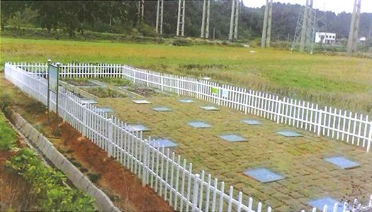 12betcom某农村污水治理项目工程全景